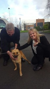 Goldie the dog with Bob and Bernie of the animal trust fund