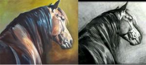horses-auction-Alexandra-Zolich